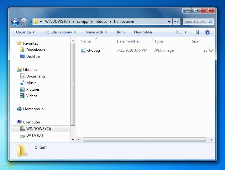 Hướng dẫn cài đặt localhost trên máy tính với XAMPP 17